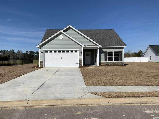 205 Maiden's Choice Dr., Conway, SC 29527 (MLS #2010099) :: The Lachicotte Company