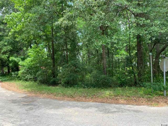 000 Indiantown Rd., Kingstree, SC 29556 (MLS #2010124) :: Right Find Homes