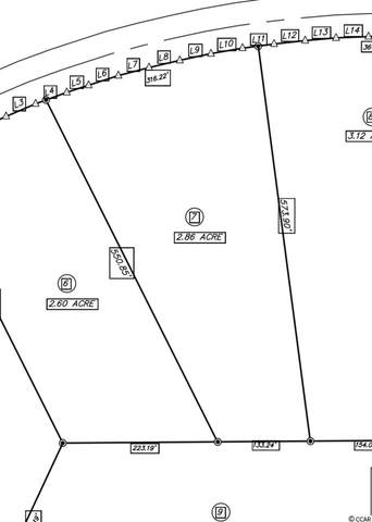 TBD Highway 472, Conway, SC 29526 (MLS #2010218) :: The Lachicotte Company
