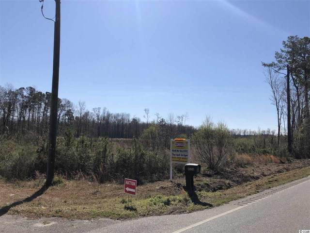 Highway 19, Conway, SC 29526 (MLS #2010242) :: The Lachicotte Company