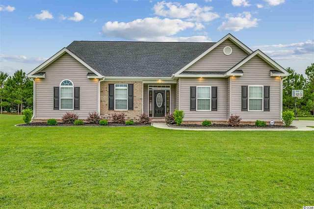 313 Adoniram Dr., Conway, SC 29526 (MLS #2010257) :: Jerry Pinkas Real Estate Experts, Inc