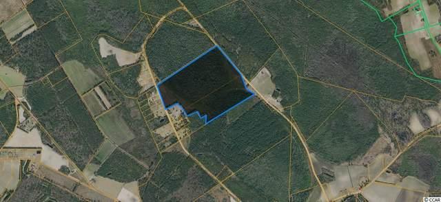 TBD Fifteen Mile Bay Rd., Nichols, SC 29581 (MLS #2010294) :: Hawkeye Realty