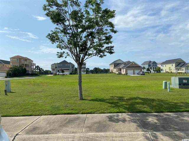 736 Crystal Water Way, Myrtle Beach, SC 29579 (MLS #2010853) :: The Litchfield Company