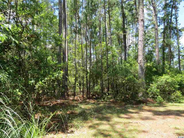 Lot 7 Fiddlers Loop, Georgetown, SC 29440 (MLS #2010979) :: The Lachicotte Company