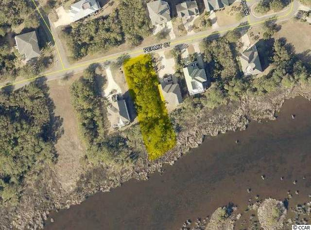 Lot 12 Permit Ct., Georgetown, SC 29440 (MLS #2011138) :: The Trembley Group | Keller Williams
