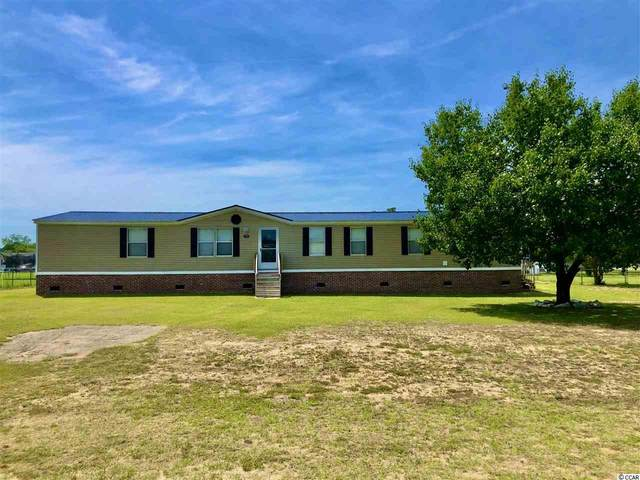 7731 Mule Trace Dr., Conway, SC 29526 (MLS #2011189) :: Duncan Group Properties
