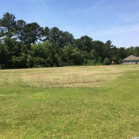 535 Mingo Trail, Johnsonville, SC 29555 (MLS #2011244) :: Duncan Group Properties