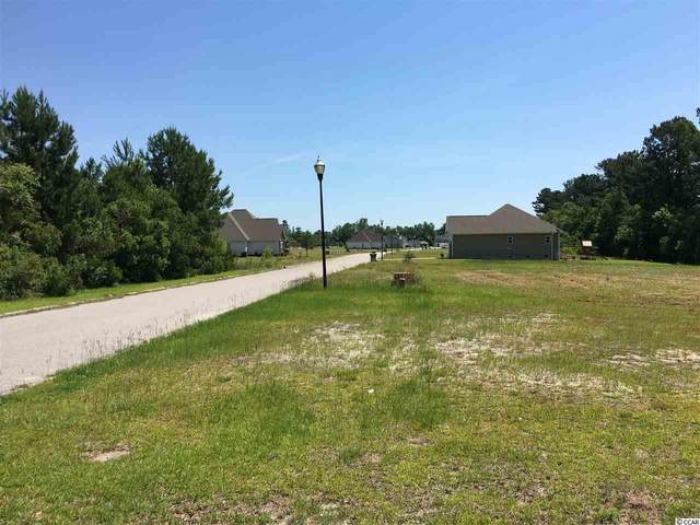 528 Mingo Trail, Johnsonville, SC 29555 (MLS #2011270) :: Hawkeye Realty
