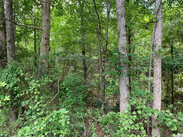 11 AC County Line Rd., Nesmith, SC 29580 (MLS #2012494) :: The Litchfield Company
