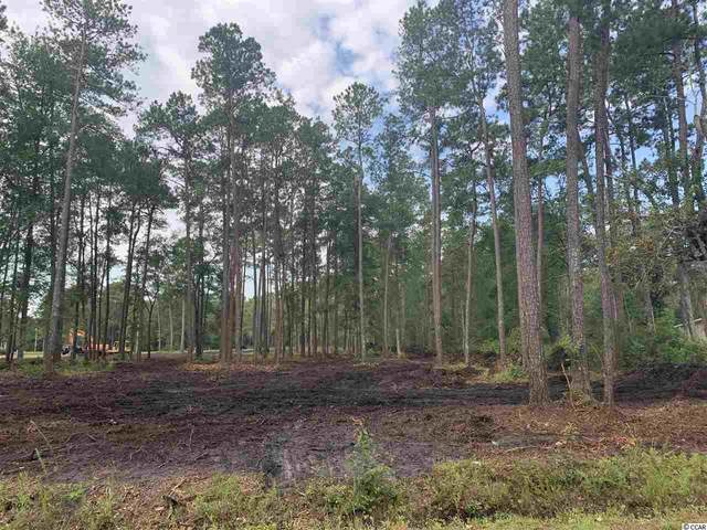 5316 Pauley Swamp Rd., Conway, SC 29527 (MLS #2012579) :: The Lachicotte Company