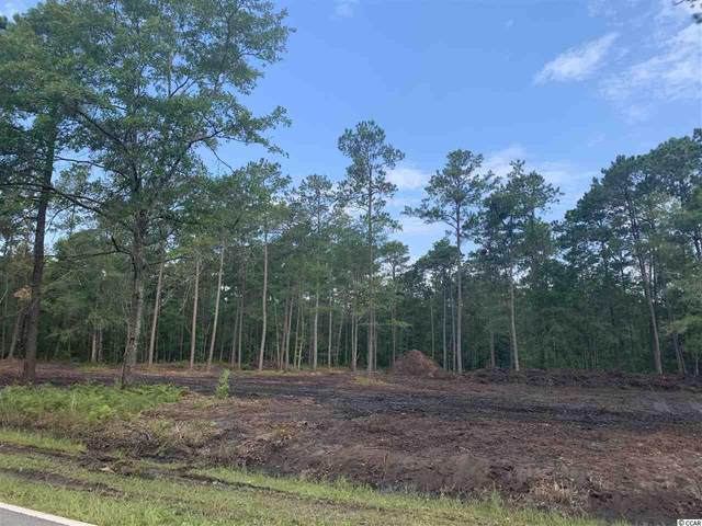 5310 Pauley Swamp Rd., Conway, SC 29527 (MLS #2012585) :: The Lachicotte Company