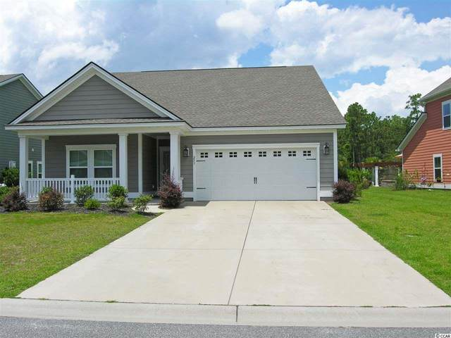 253 Southgate Ct., Pawleys Island, SC 29585 (MLS #2012606) :: The Lachicotte Company