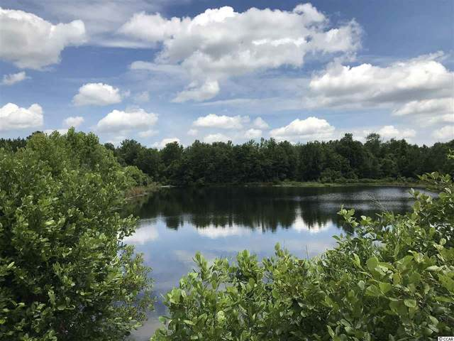 Lot 1 Chow Ln., Conway, SC 29526 (MLS #2012751) :: The Hoffman Group