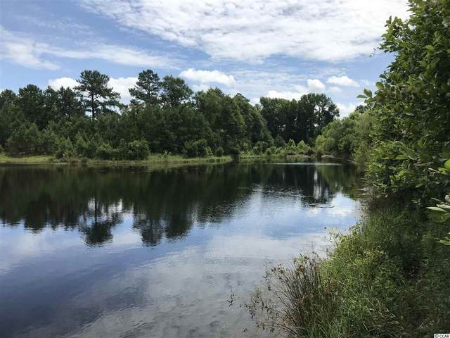 Lot 3 Chow Ln., Conway, SC 29526 (MLS #2012753) :: The Hoffman Group