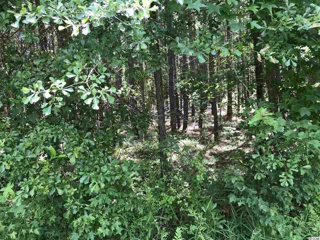 Lot 4 Chow Ln., Conway, SC 29526 (MLS #2012754) :: The Hoffman Group