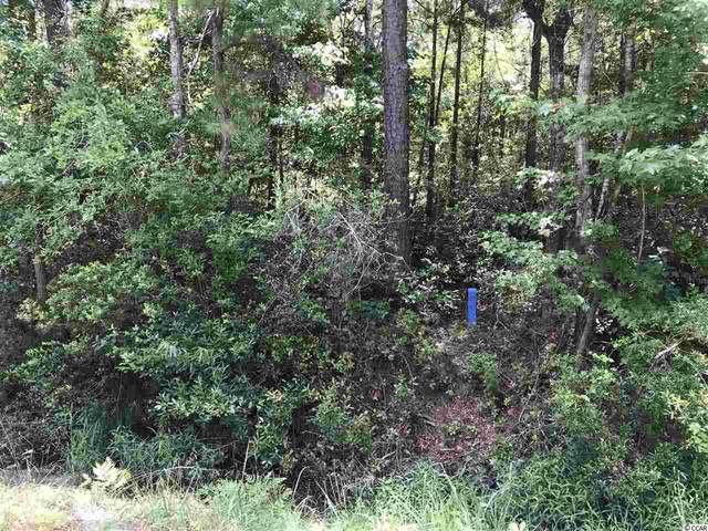 Lot 5 Chow Ln., Conway, SC 29526 (MLS #2012755) :: The Hoffman Group