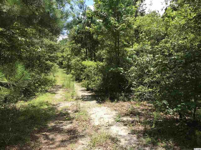 Lot 6 Chow Ln., Conway, SC 29526 (MLS #2012756) :: The Hoffman Group