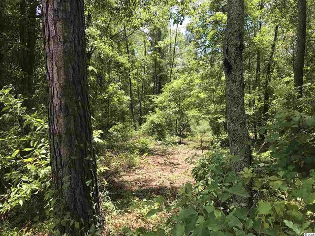 Lot 7 Chow Ln., Conway, SC 29526 (MLS #2012757) :: The Hoffman Group