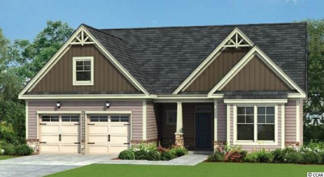 164 Board Landing Circle, Conway, SC 29526 (MLS #2012823) :: The Hoffman Group