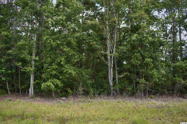 TBD Highway 707, Murrells Inlet, SC 29576 (MLS #2012975) :: The Lachicotte Company