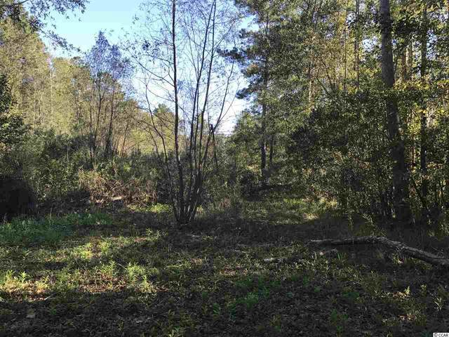 Lot 2 Dog Bluff Rd., Galivants Ferry, SC 29544 (MLS #2012995) :: The Litchfield Company