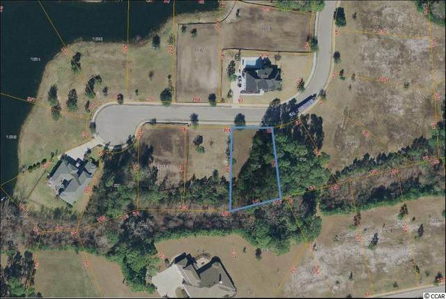 1015 Black Skimmer Dr., Conway, SC 29526 (MLS #2013090) :: Coldwell Banker Sea Coast Advantage