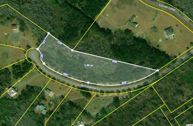 Lot 14 Belladonna Ct., Georgetown, SC 29440 (MLS #2013488) :: The Litchfield Company