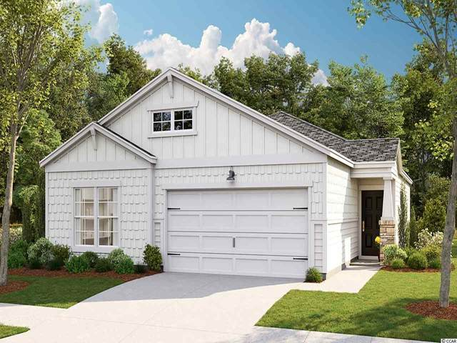 258 S Reindeer Rd., Myrtle Beach, SC 29575 (MLS #2014052) :: Jerry Pinkas Real Estate Experts, Inc