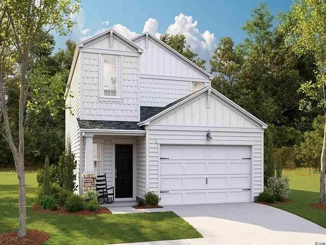 254 S Reindeer Rd., Myrtle Beach, SC 29575 (MLS #2014056) :: Jerry Pinkas Real Estate Experts, Inc