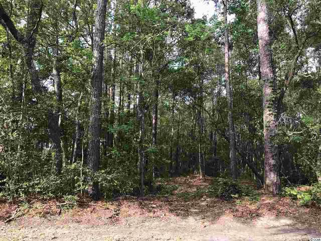 Lot 11 Collins Meadow Dr., Georgetown, SC 29440 (MLS #2014296) :: The Hoffman Group