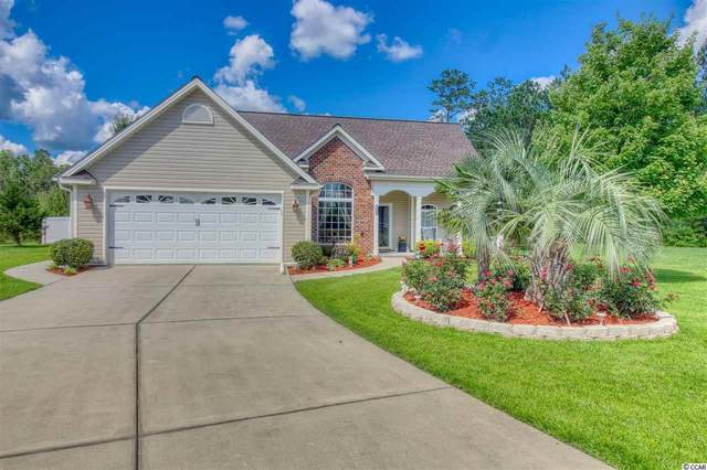 115 Lions Paw Ct., Loris, SC 29569 (MLS #2014303) :: The Lachicotte Company