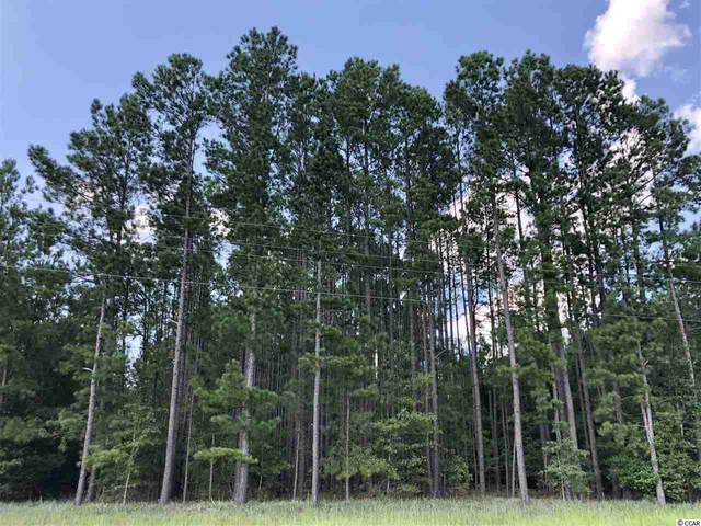 TBD Highway 430, Nichols, SC 29581 (MLS #2014398) :: Garden City Realty, Inc.