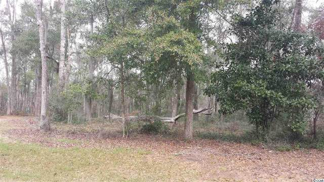 86 Percival Ct., Pawleys Island, SC 29585 (MLS #2014604) :: Duncan Group Properties