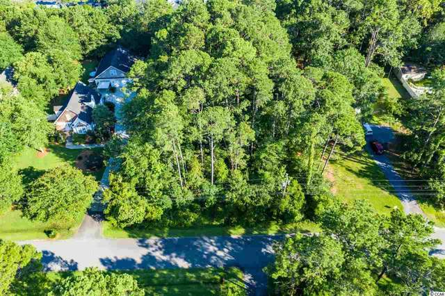 102 Springfield Rd., Pawleys Island, SC 29585 (MLS #2014619) :: The Litchfield Company