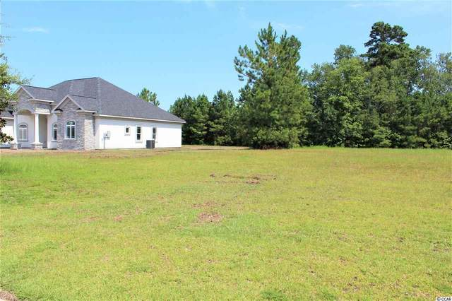 1037 Wigeon Dr., Conway, SC 29526 (MLS #2014665) :: The Litchfield Company