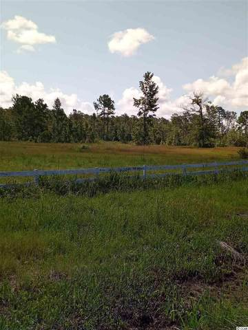 828 Chair Factory Rd., Nakina, SC 28455 (MLS #2015234) :: Hawkeye Realty
