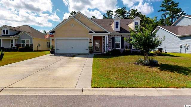 785 Lafayette Park Dr., Little River, SC 29566 (MLS #2015291) :: Welcome Home Realty