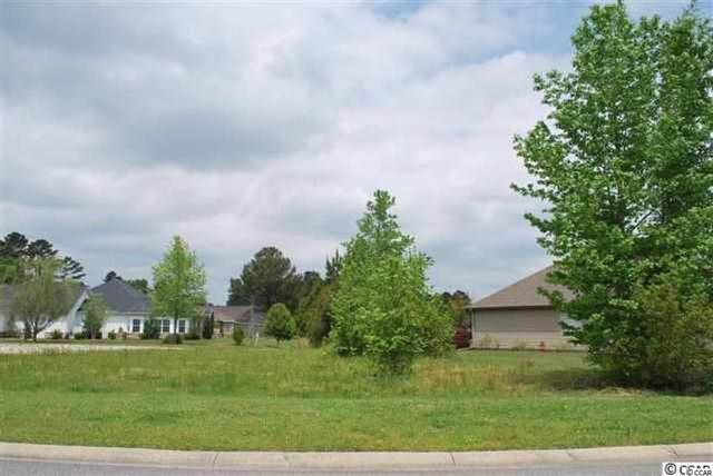 944 Fox Tail Dr., Longs, SC 29568 (MLS #2015430) :: Jerry Pinkas Real Estate Experts, Inc