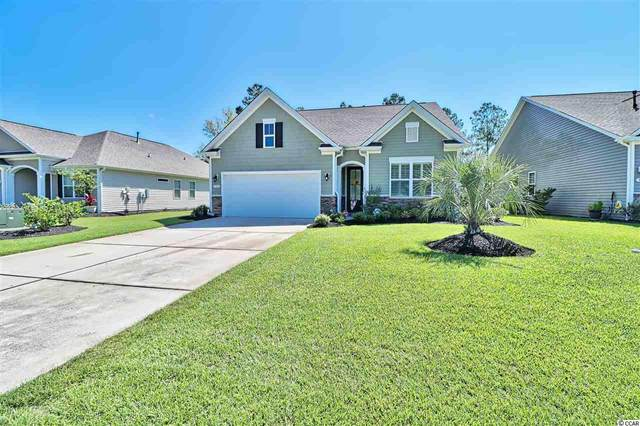 362 Flowering Branch Ave., Little River, SC 29566 (MLS #2015557) :: Dunes Realty Sales