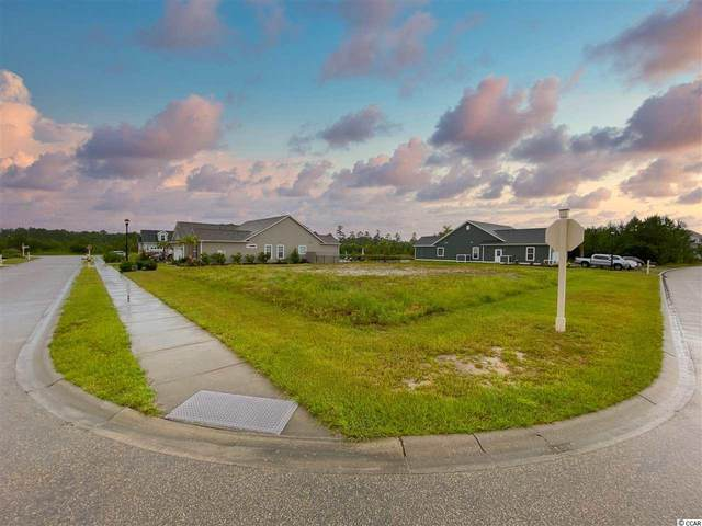 1009 Englemann Oak Dr., Myrtle Beach, SC 29579 (MLS #2015559) :: Coldwell Banker Sea Coast Advantage