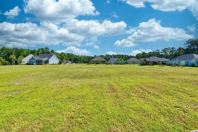 2008 Wood Stork Dr., Conway, SC 29526 (MLS #2015568) :: The Litchfield Company