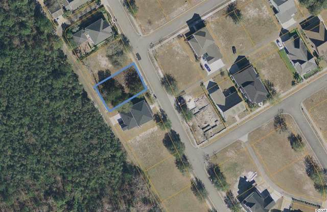 1404 James Island  Dr., North Myrtle Beach, SC 29582 (MLS #2015711) :: Hawkeye Realty