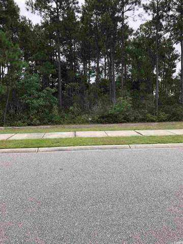 313 Babylon Pine Dr., Myrtle Beach, SC 29579 (MLS #2015744) :: Garden City Realty, Inc.