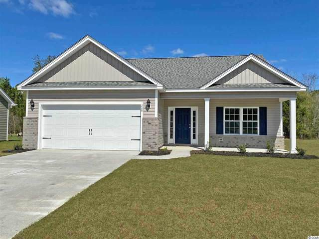 300 Palm Terrace Loop, Conway, SC 29526 (MLS #2016072) :: James W. Smith Real Estate Co.