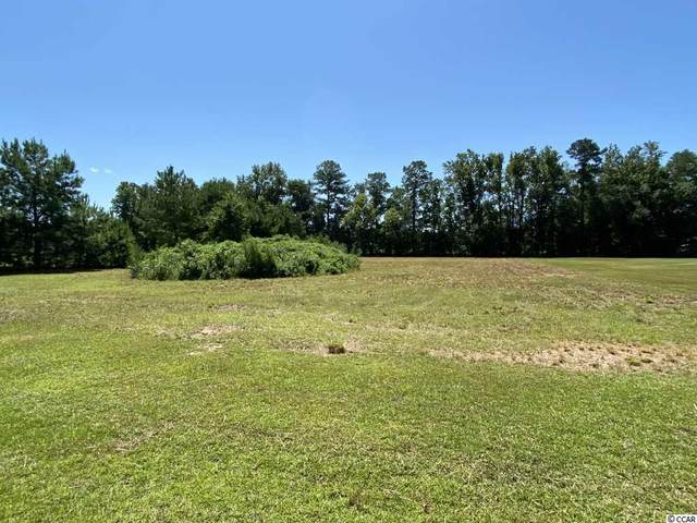 111 Tee Jay Ct., Conway, SC 29527 (MLS #2016156) :: The Hoffman Group