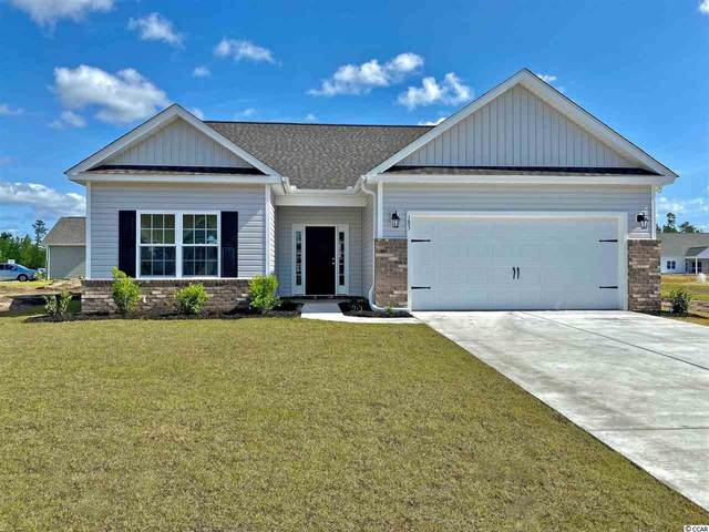 284 Palm Terrace Loop, Conway, SC 29526 (MLS #2016269) :: James W. Smith Real Estate Co.