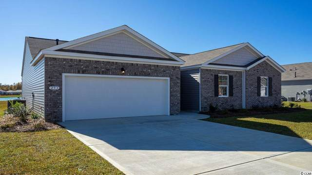 919 Snowberry Dr., Longs, SC 29568 (MLS #2016494) :: Jerry Pinkas Real Estate Experts, Inc