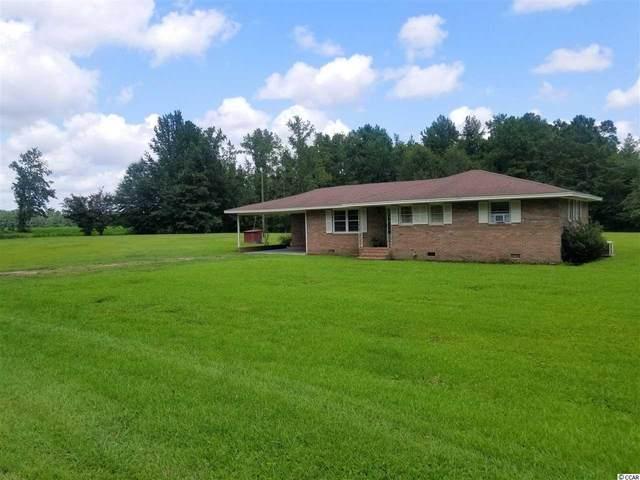 964 Mount Olive Church Rd., Nichols, SC 29581 (MLS #2016577) :: The Litchfield Company