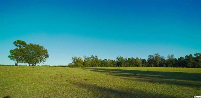 4500 Bottle Branch Rd., Conway, SC 29527 (MLS #2016914) :: The Hoffman Group