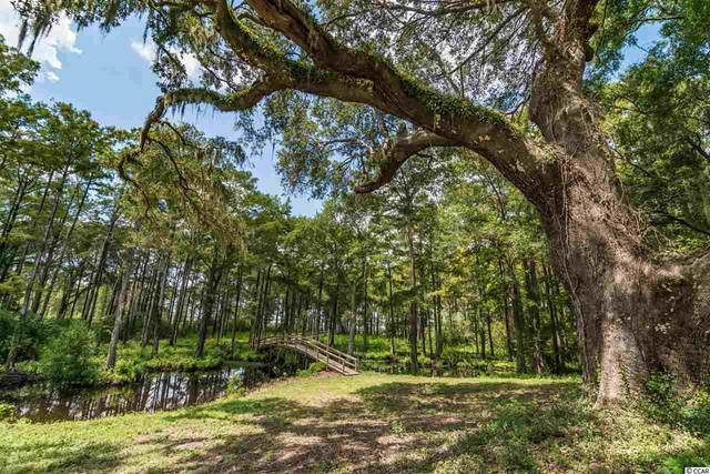 LOT A & B Joseph Isaac Way, Pawleys Island, SC 29585 (MLS #2017103) :: Coastal Tides Realty